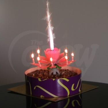 Bán Nến sinh nhật nở hoa phát nhạc giá tốt nhất